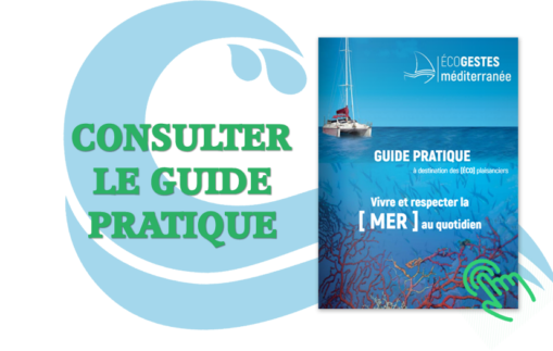 consulter_le_guide_pratique